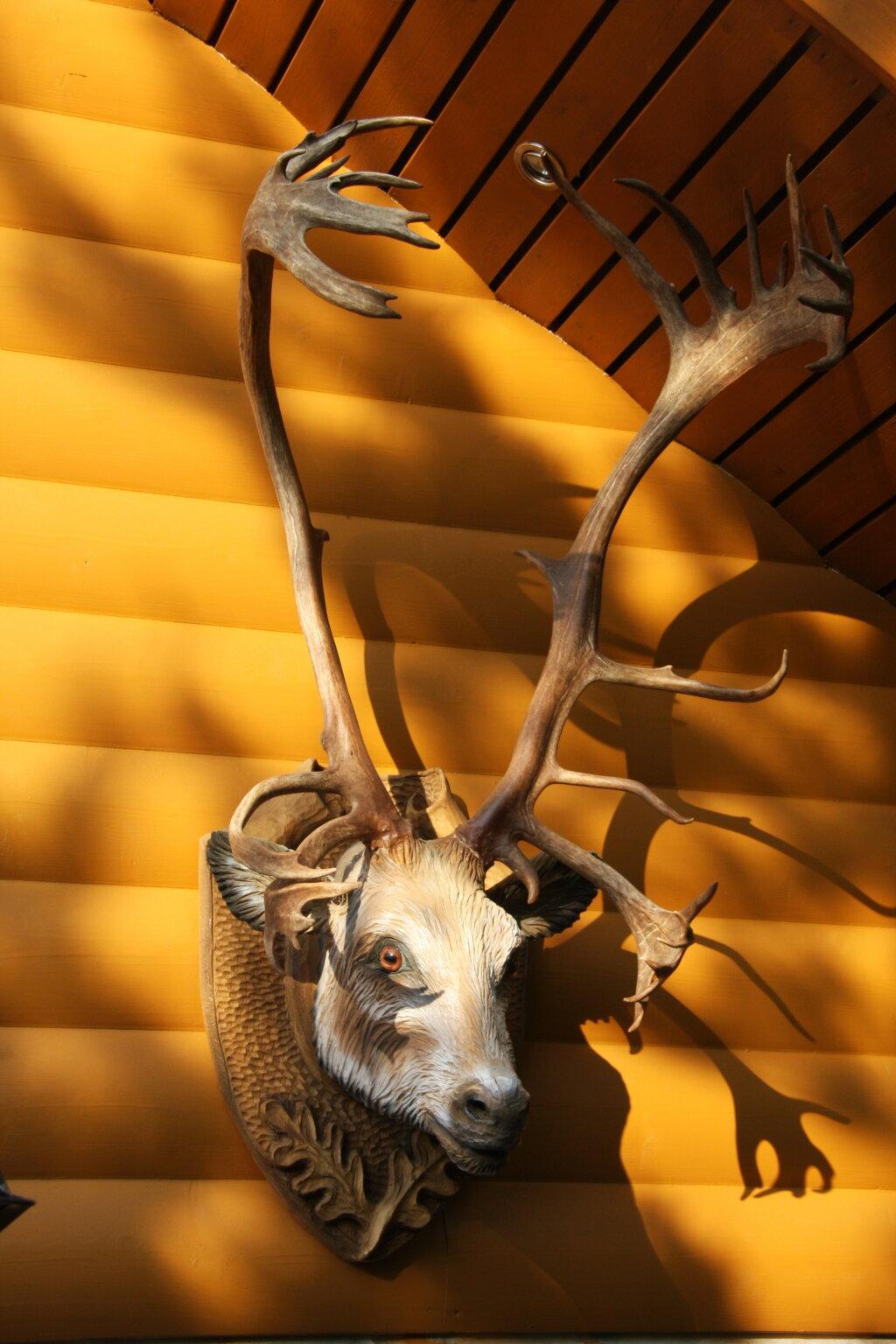 Резная голова северного оленя на медальоне